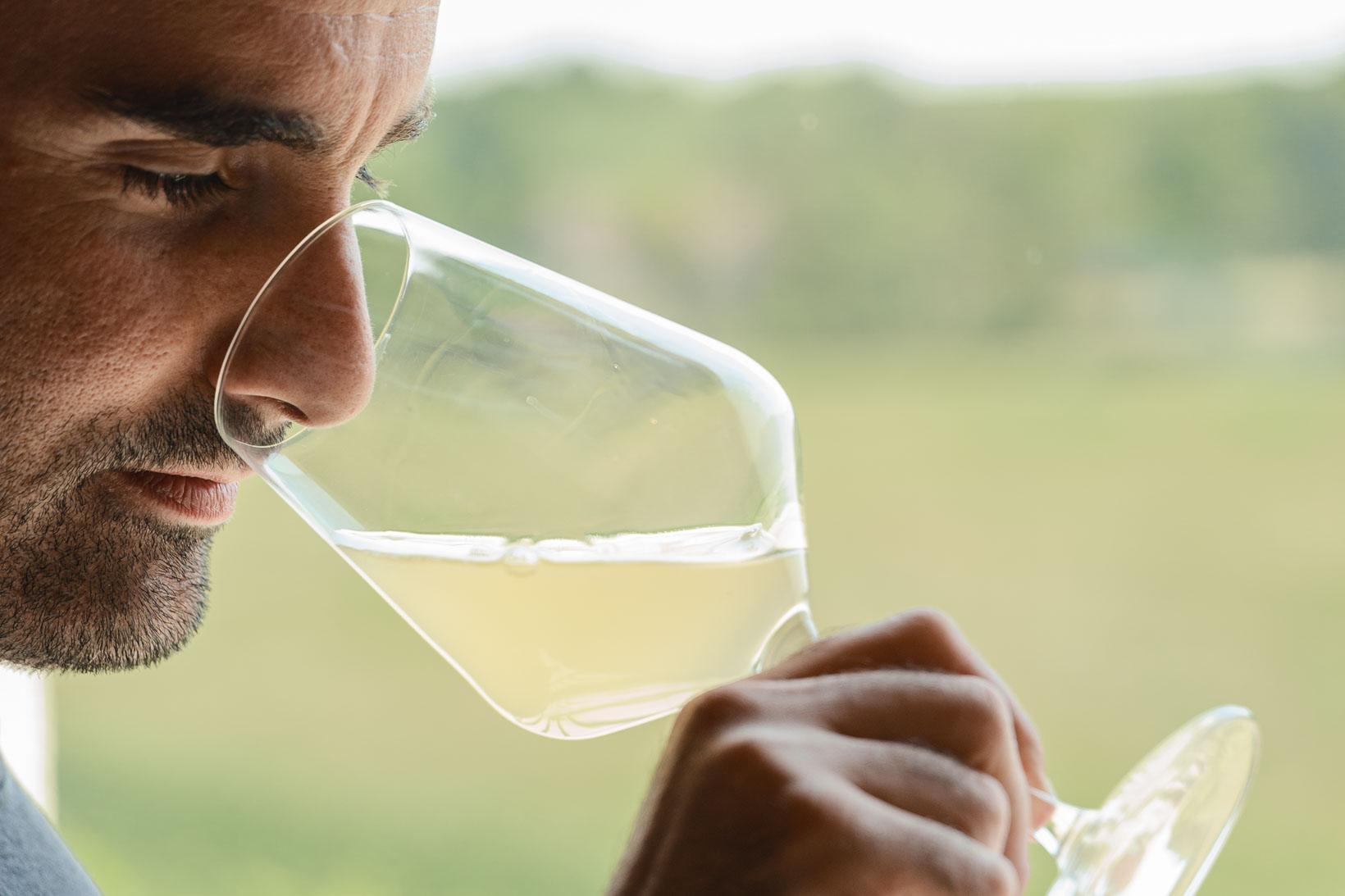 sauro-maule-wines-L1570760_p_lr_web