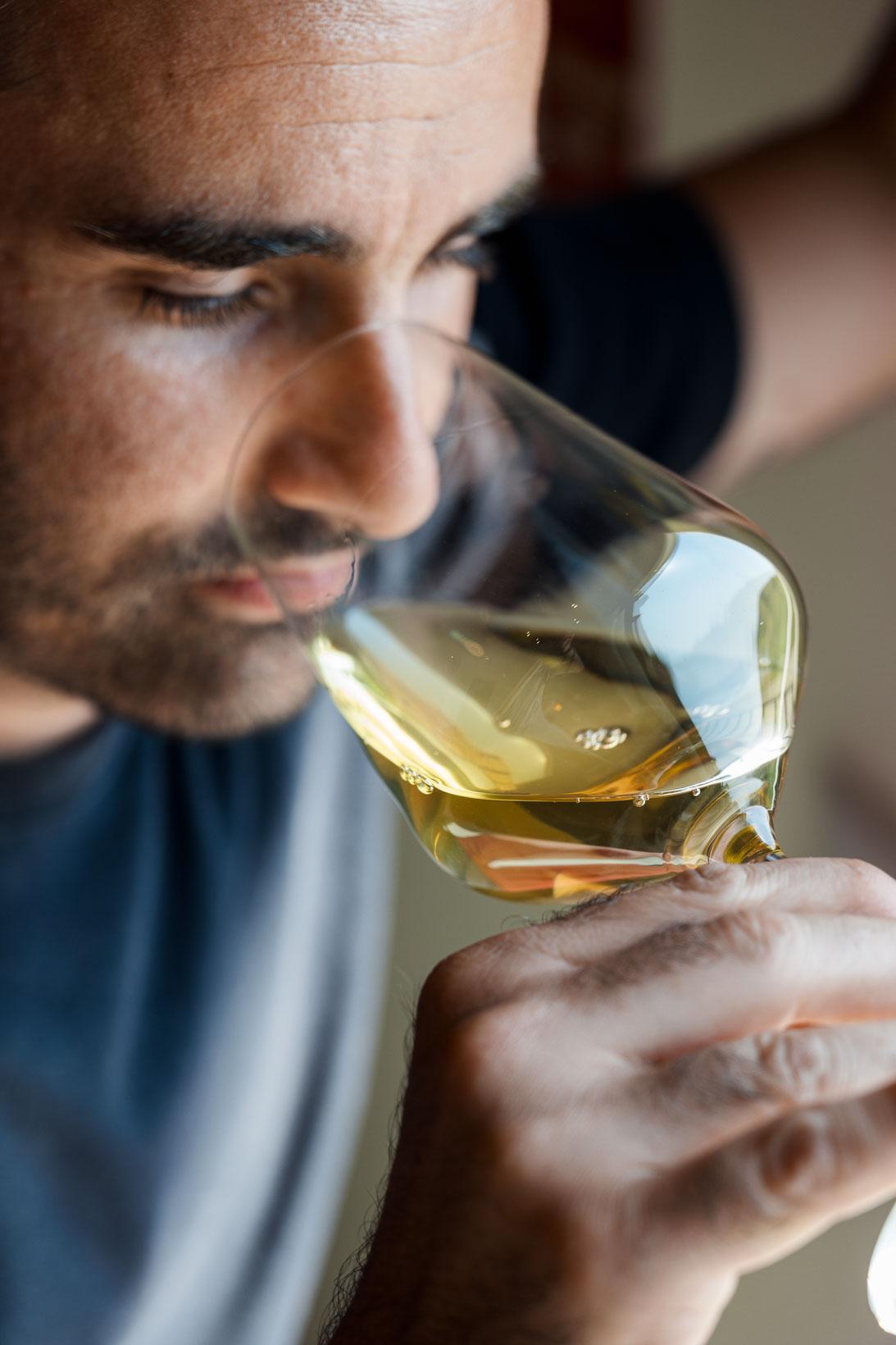 sauro-maule-wines-L1580025_p_lr_web