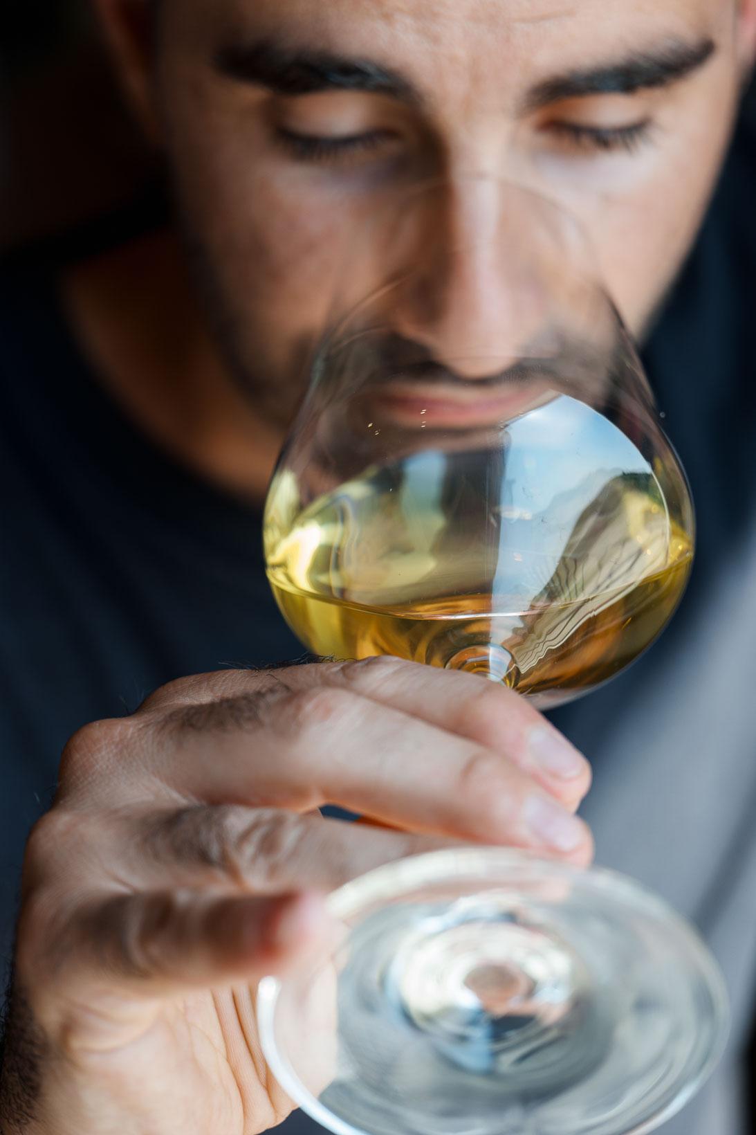 sauro-maule-wines-L1580029_p_lr_web