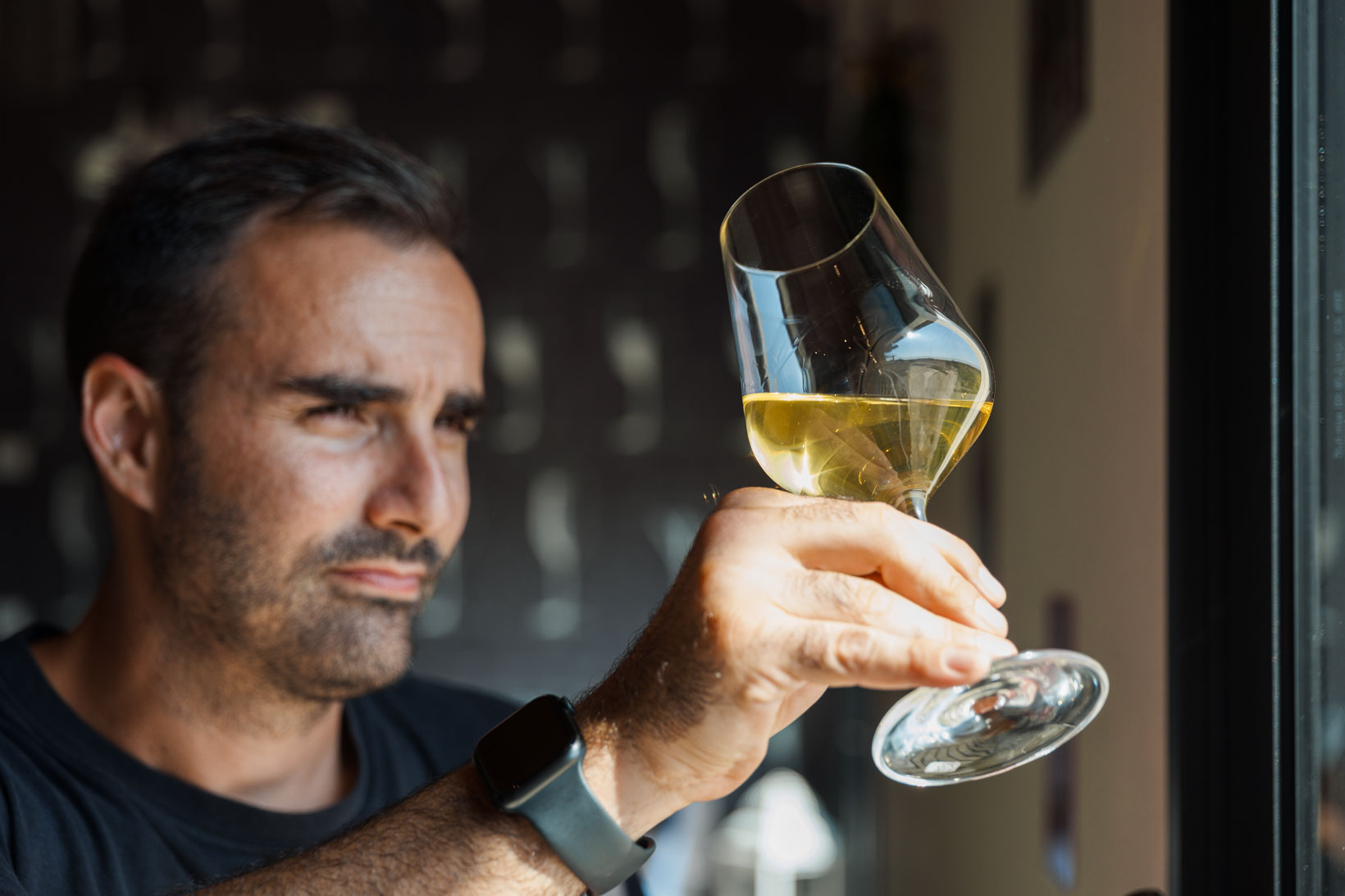 sauro-maule-wines-L1580052_p_lr_web