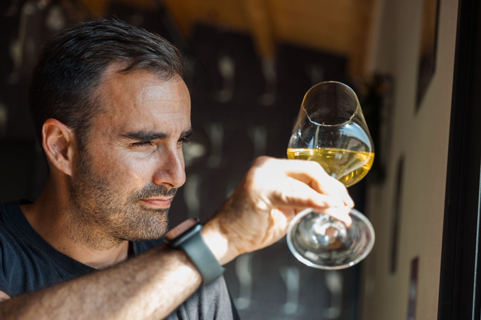 sauro-maule-wines-L1580060_p_lr_web