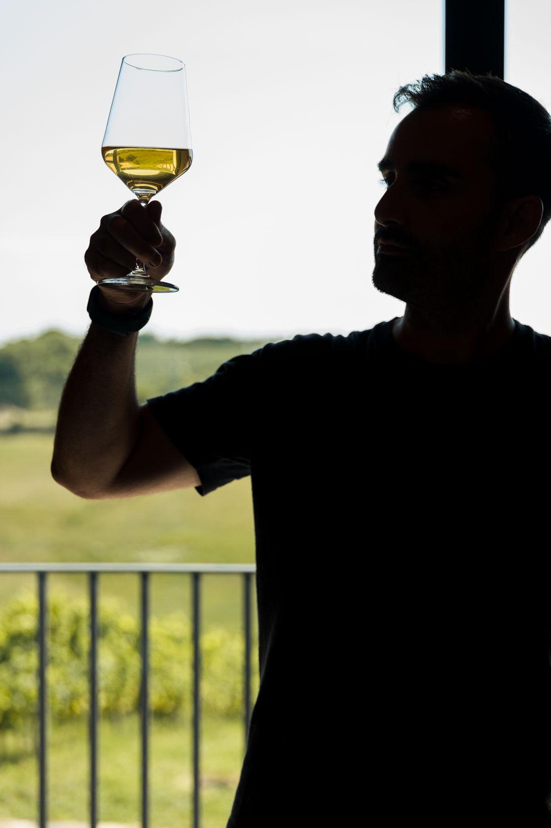 sauro-maule-wines-L1580087_p_lr_web
