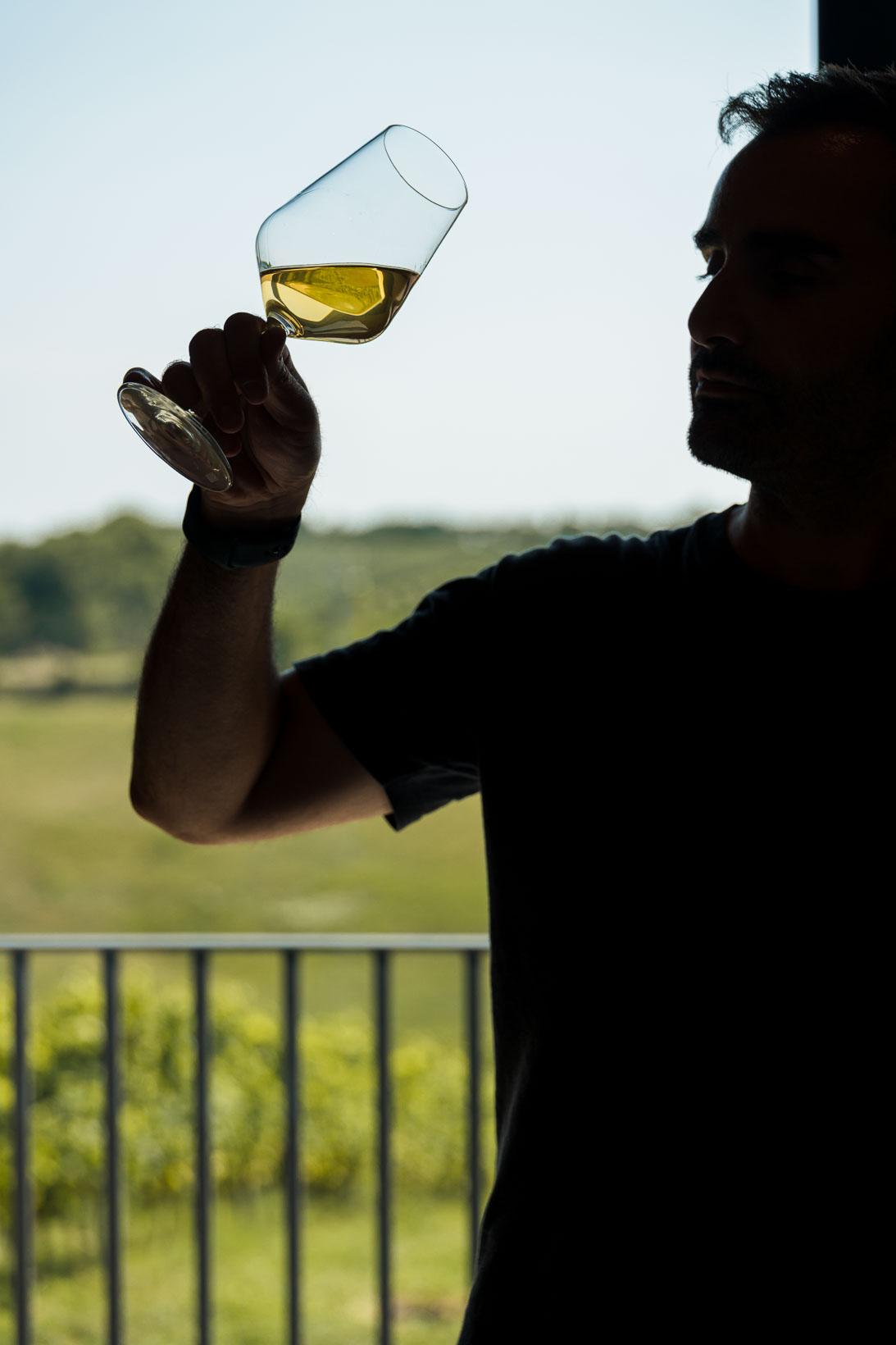 sauro-maule-wines-L1580090_p_lr_web