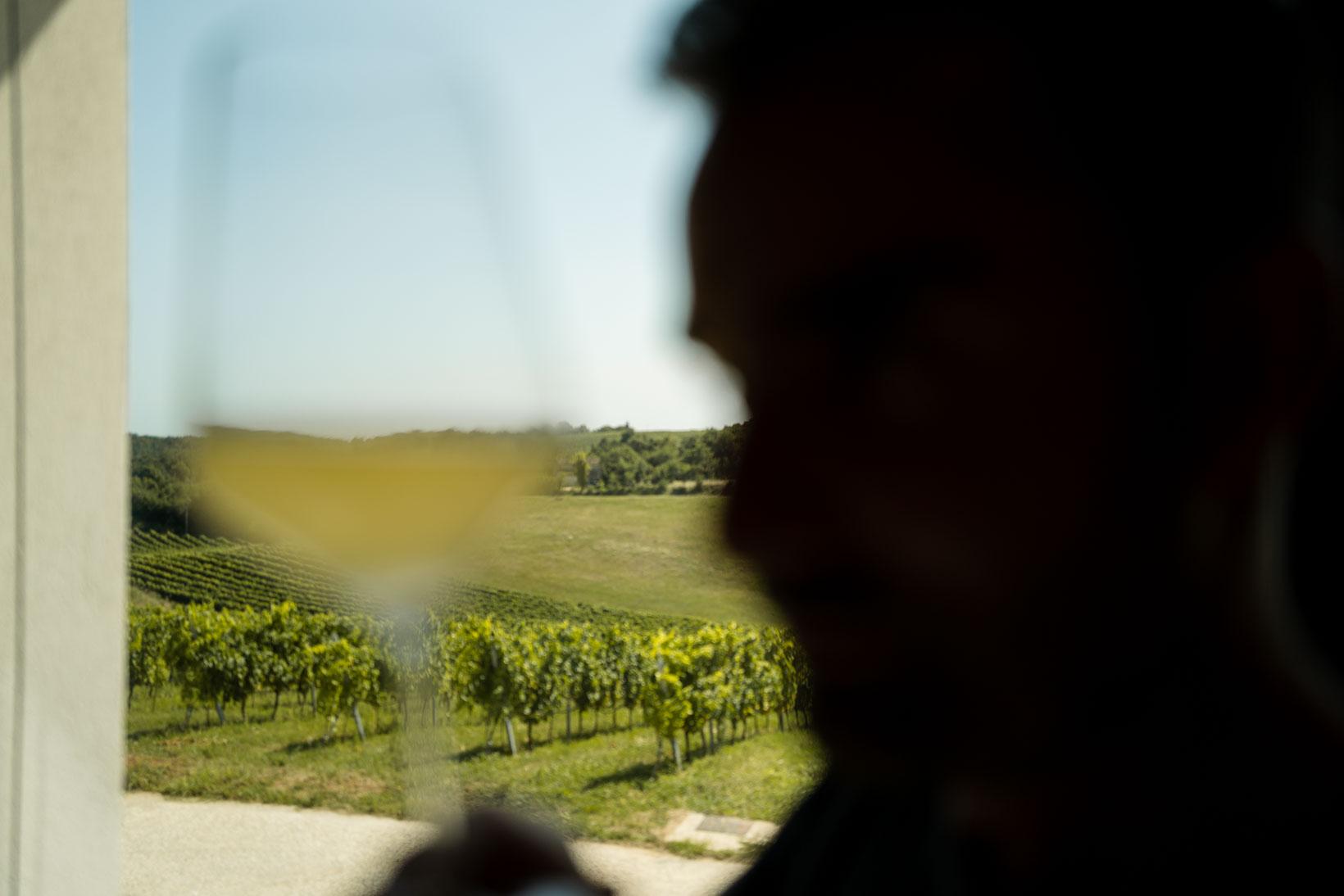 sauro-maule-wines-Q1030236_p_lr_web