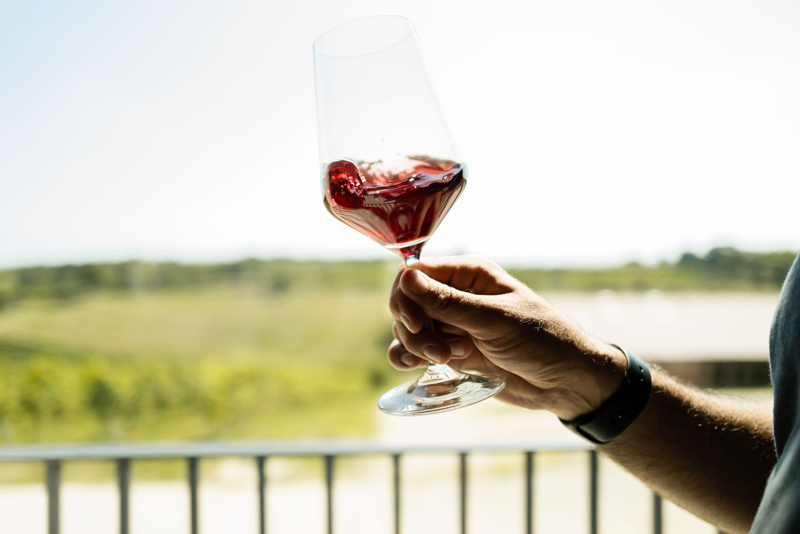 sauro-maule-wines-Q1030272_p_lr_web