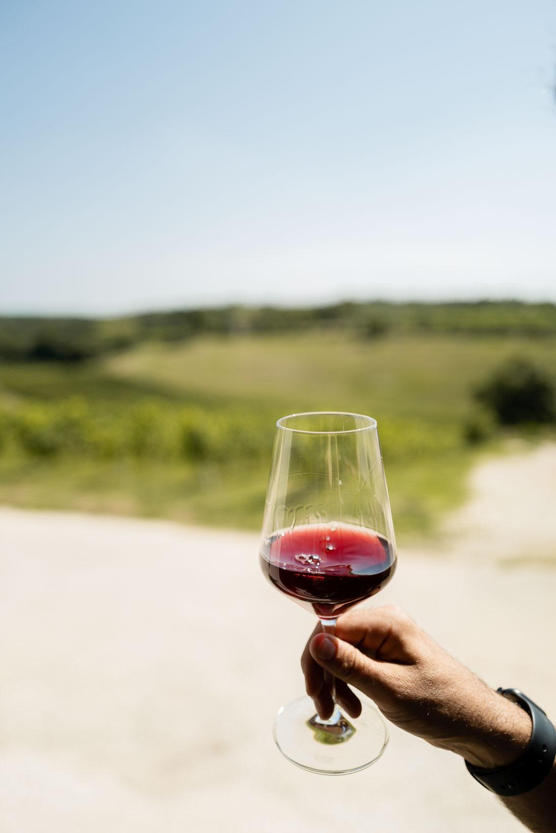 sauro-maule-wines-Q1030285_p_lr_web
